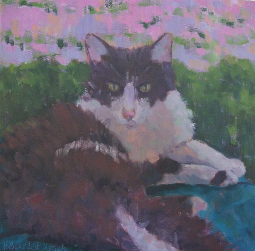 """Yoyo in Repose"" original fine art by Katharine March"
