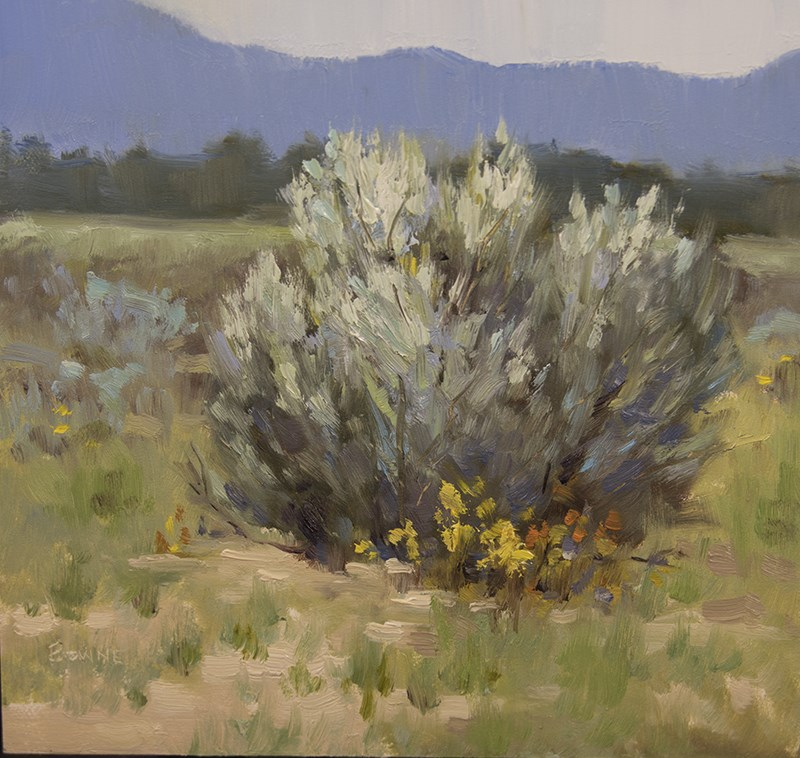 """A Taste of Sage"" original fine art by Bonnie Bowne"