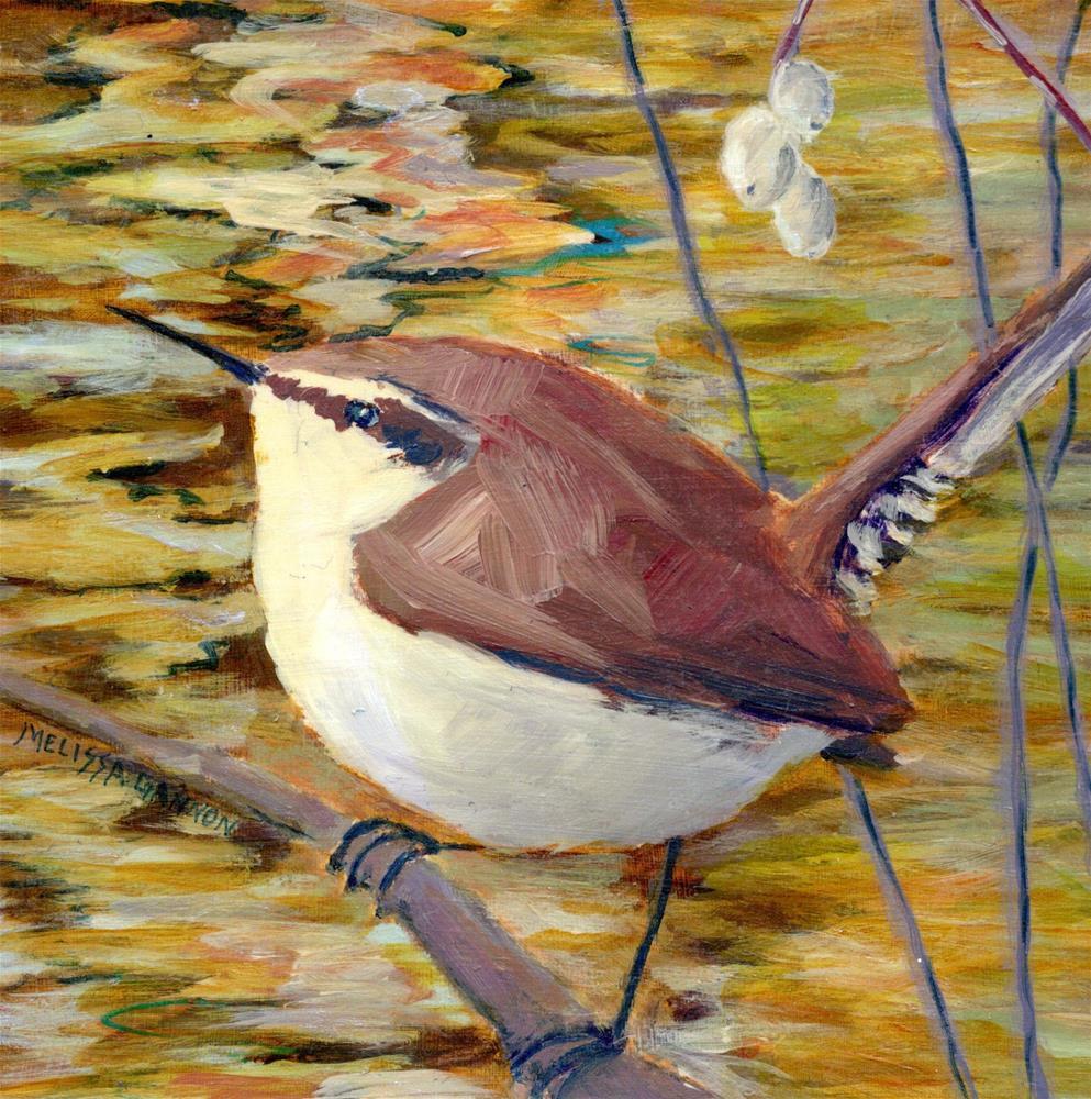 """Wren on a Branch"" original fine art by Melissa Gannon"