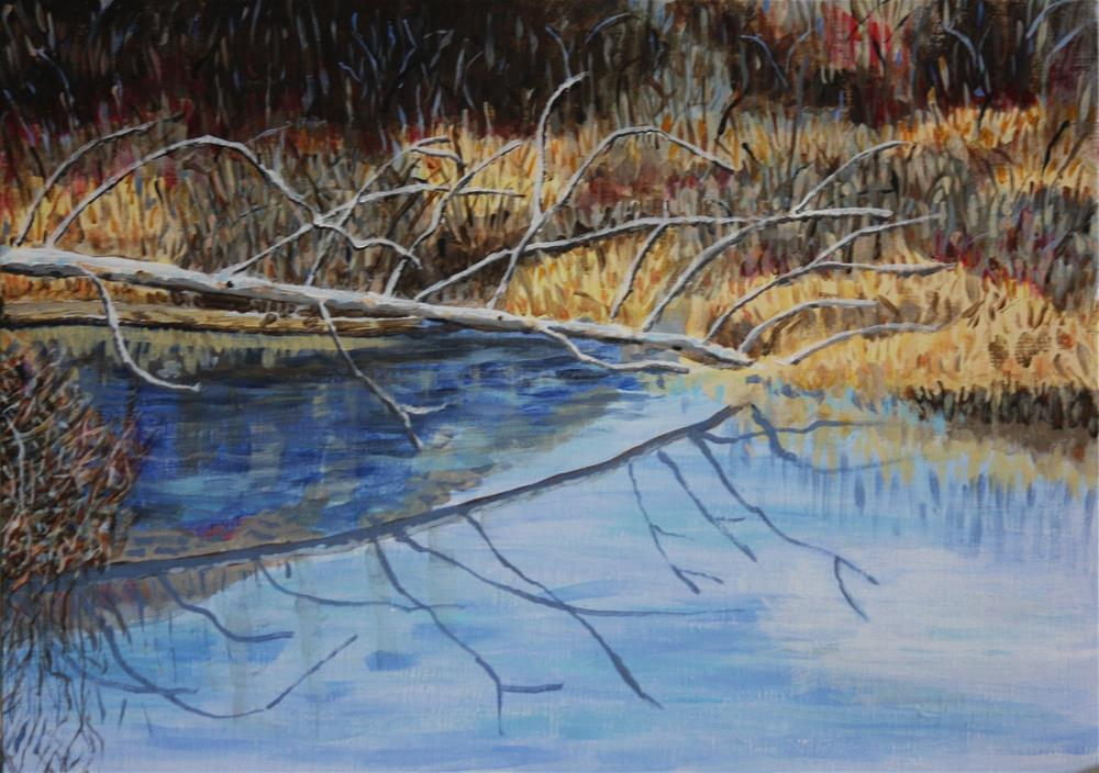 """Wetlands Reflections"" original fine art by Terri-Anne Barge"