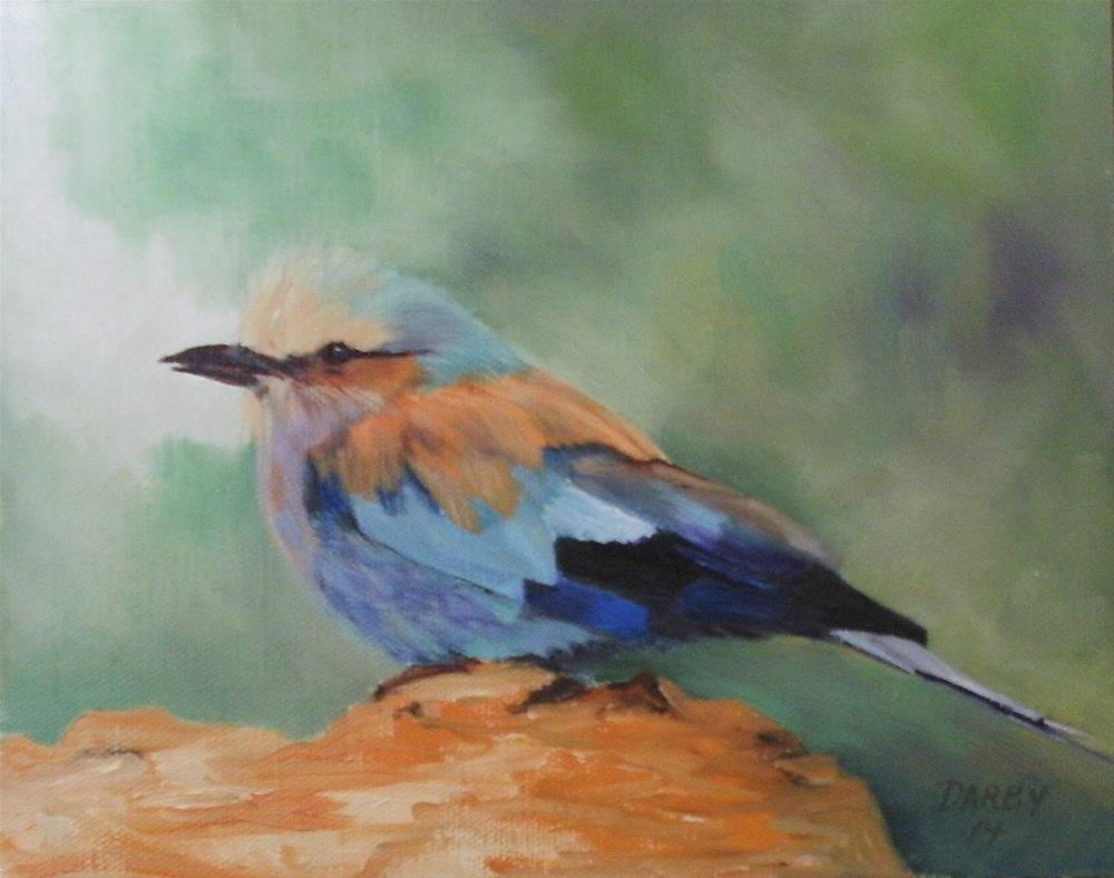 """Lilac Breasted Roller"" original fine art by Lynn Darby"