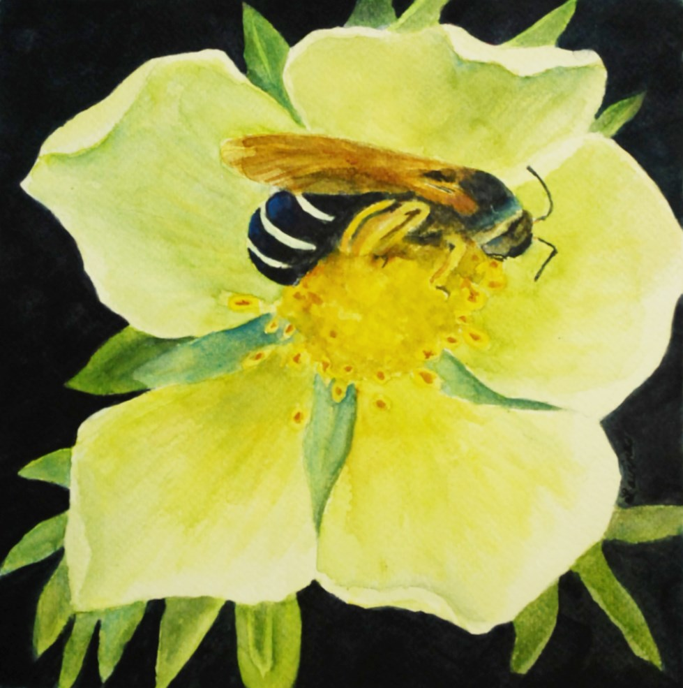 """Big Bee, Yellow Flower"" original fine art by Lavina Blossom"