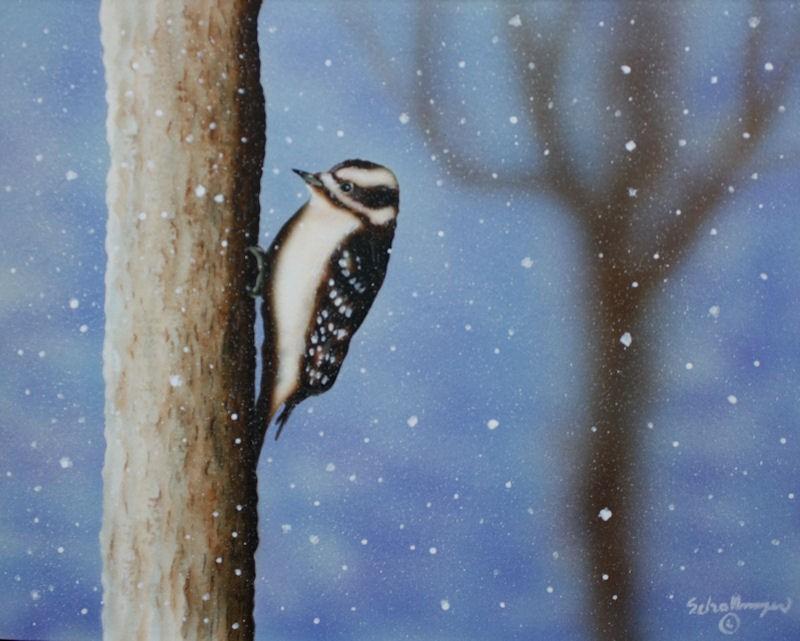 """""""Wintry Woodpecker"""" original fine art by Fred Schollmeyer"""