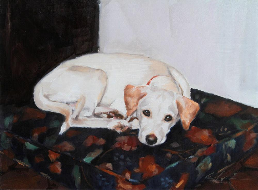 """Sawyer by Clair Hartmann"" original fine art by Clair Hartmann"