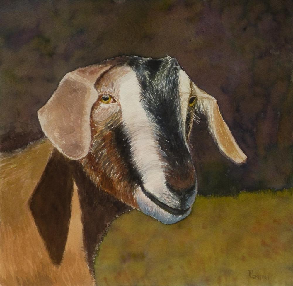 """""""Bovid: Sei"""" original fine art by Peter Lentini"""