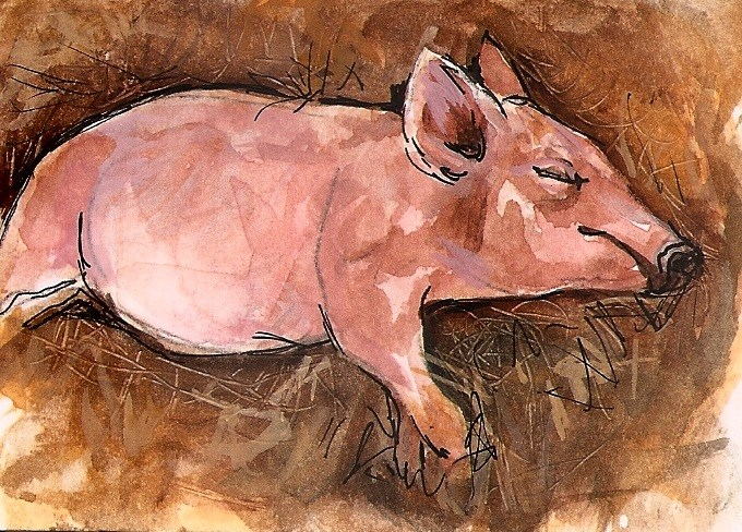 """ACEO Sleeping Piggy Hog Straw Watercolor Art Painting illustration Penny StewArt"" original fine art by Penny Lee StewArt"