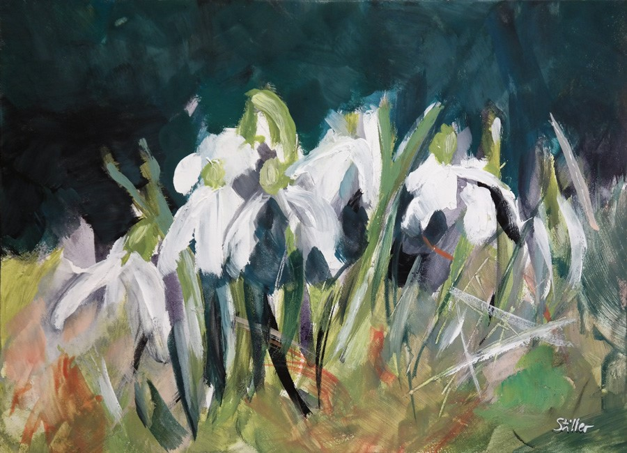 """2759 Snowdrops"" original fine art by Dietmar Stiller"