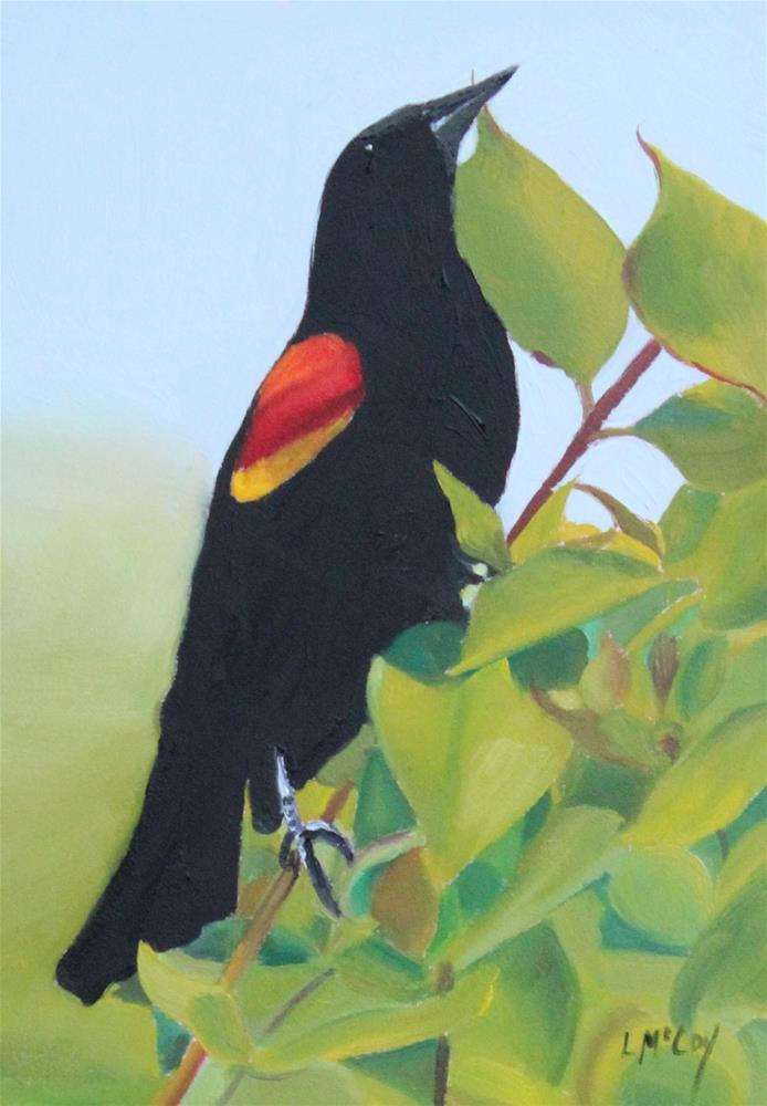 """Victorious, Red-winged Blackbird"" original fine art by Linda McCoy"