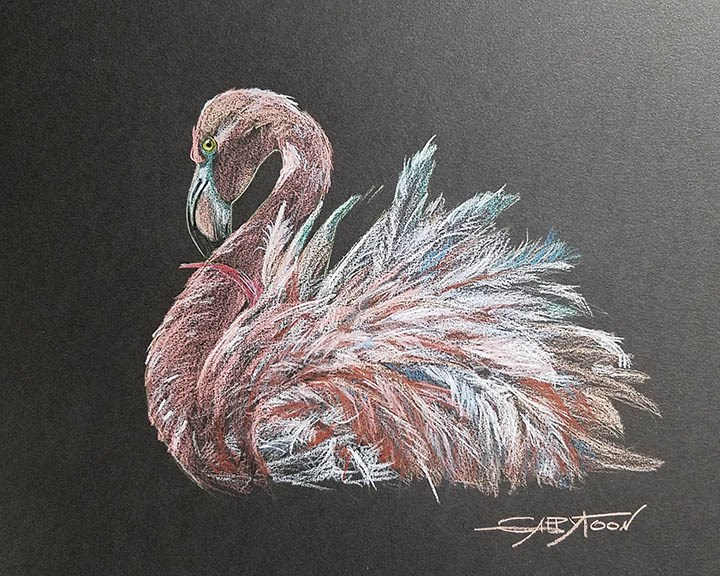 """A Pink Flamingo"" original fine art by Gabriella DeLamater"