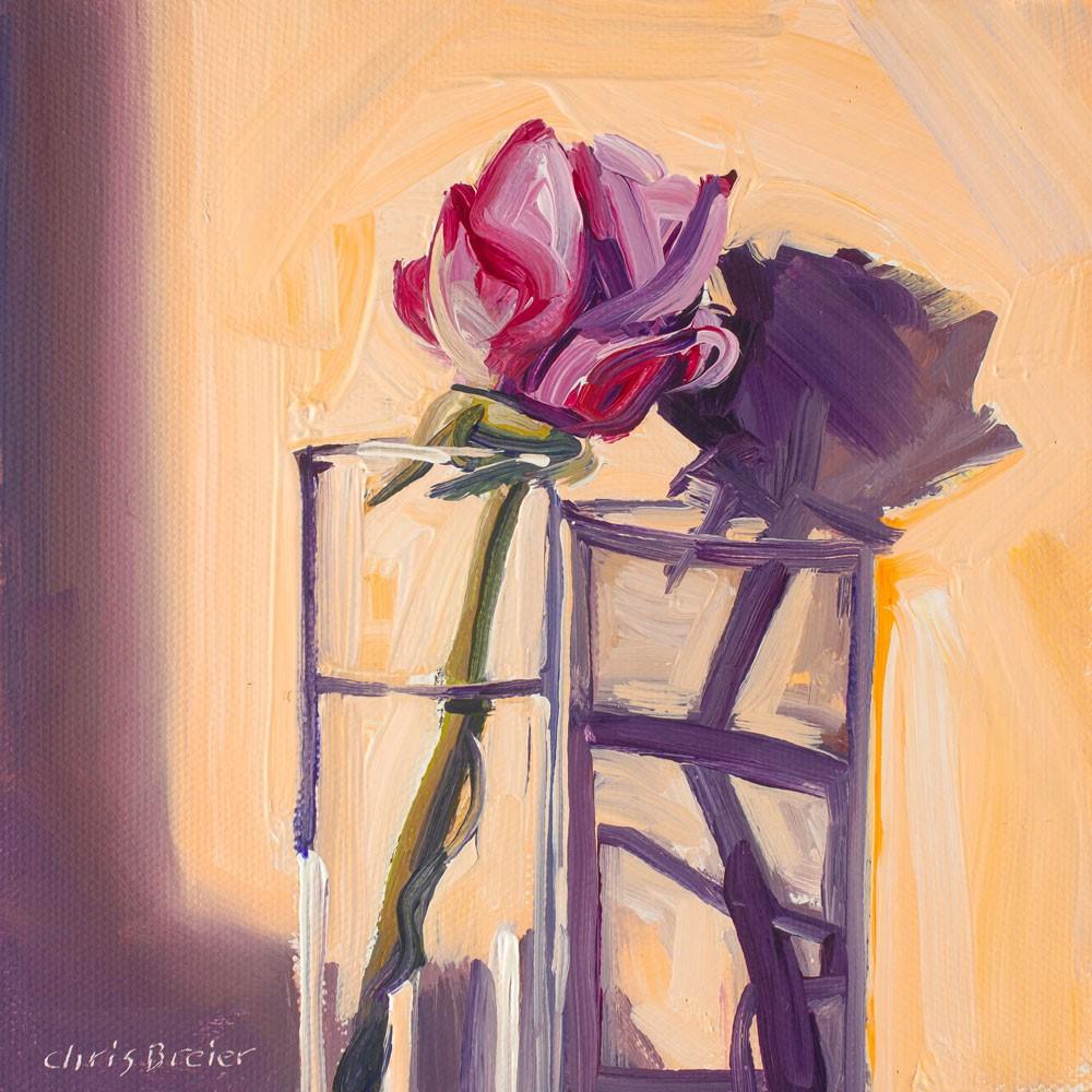 """Pink Rose II"" original fine art by Chris Breier"