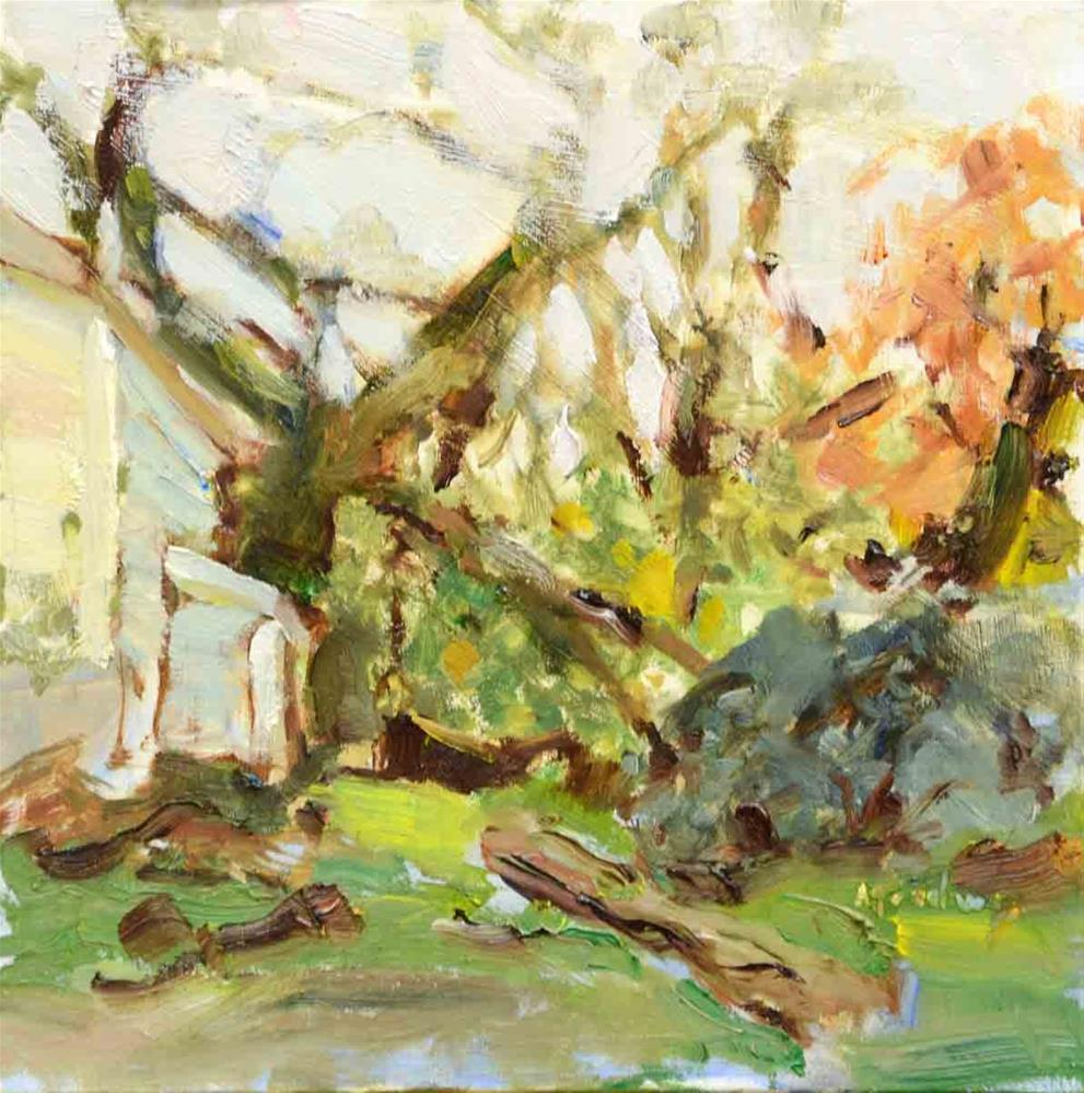 """November in the Park"" original fine art by alicia tredway"
