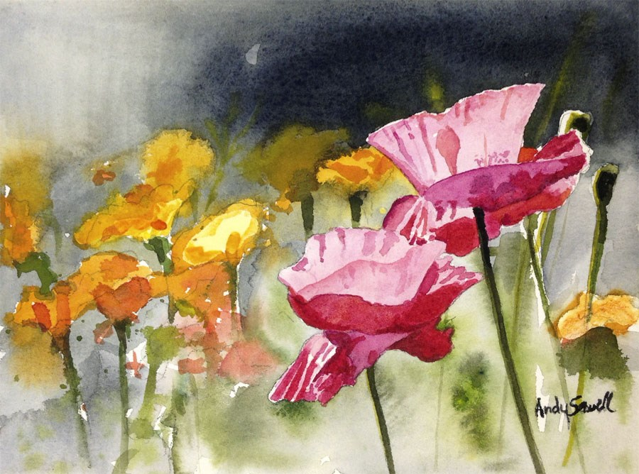 """""""Poppy Pinks"""" original fine art by Andy Sewell"""