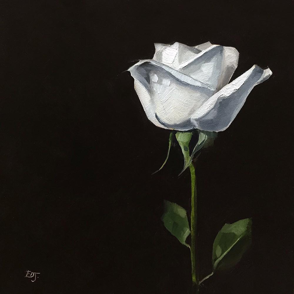 """Day 4 | White Rose 2"" original fine art by Elizabeth Dawn Johnston"