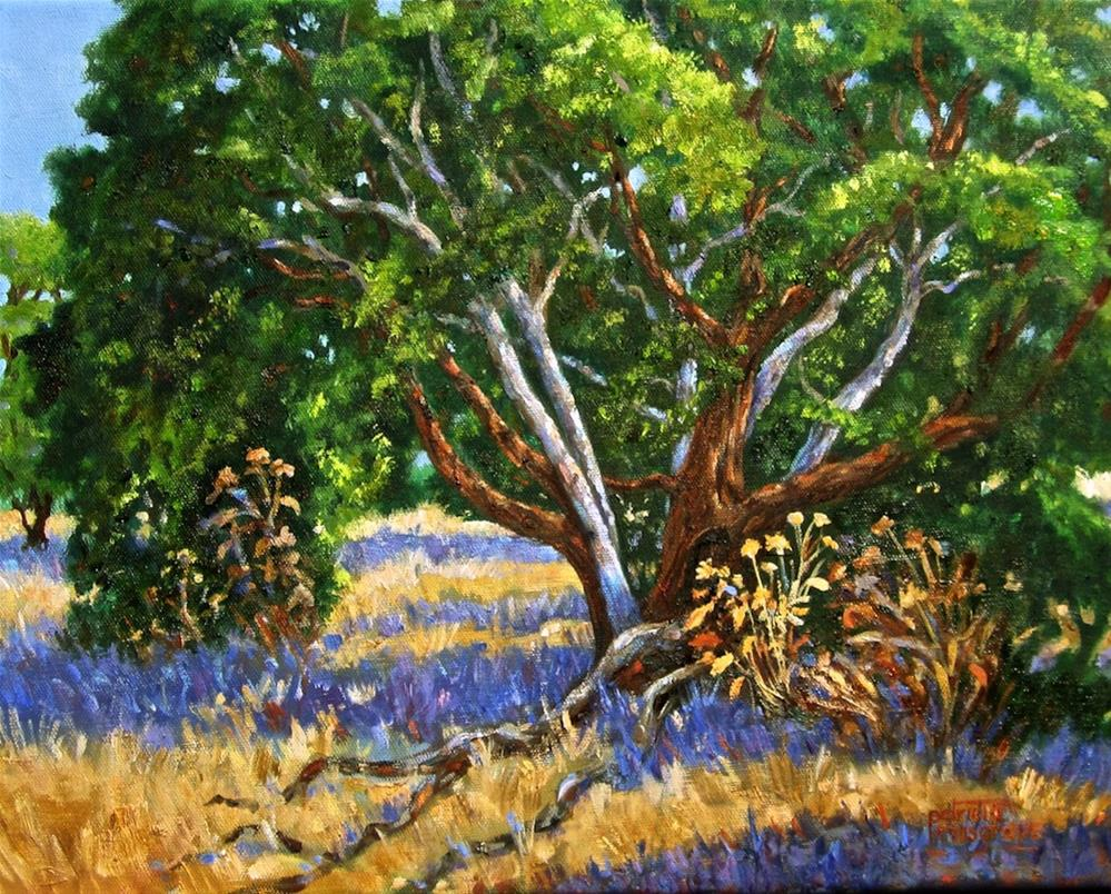 """""""Old Oak at the Annex"""" original fine art by Patricia Musgrave"""