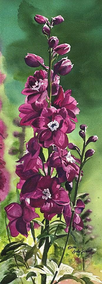 """Crimson Delphinium"" original fine art by Andy Sewell"
