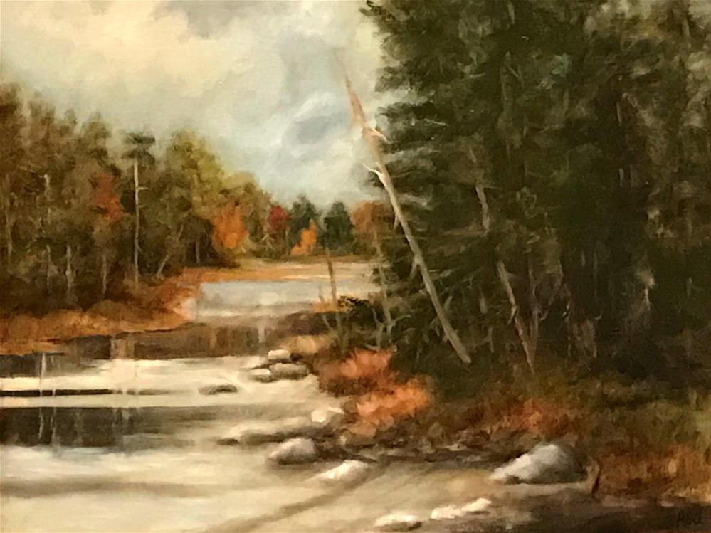 """edge of the water in Acadia"" original fine art by Betty Argiros"