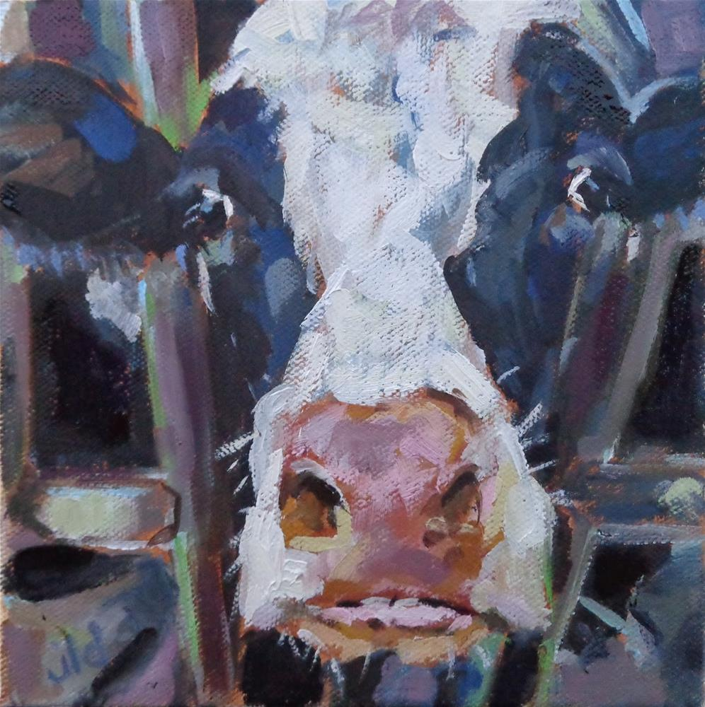 """Cow 92 WHAT ARE YOU LOOKING AT?"" original fine art by Jean Delaney"