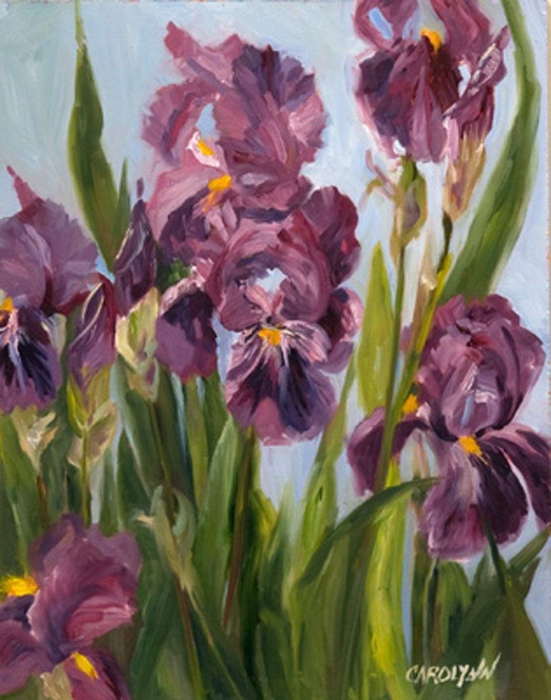 """Iris From My Garden"" original fine art by Carolynn Doan"