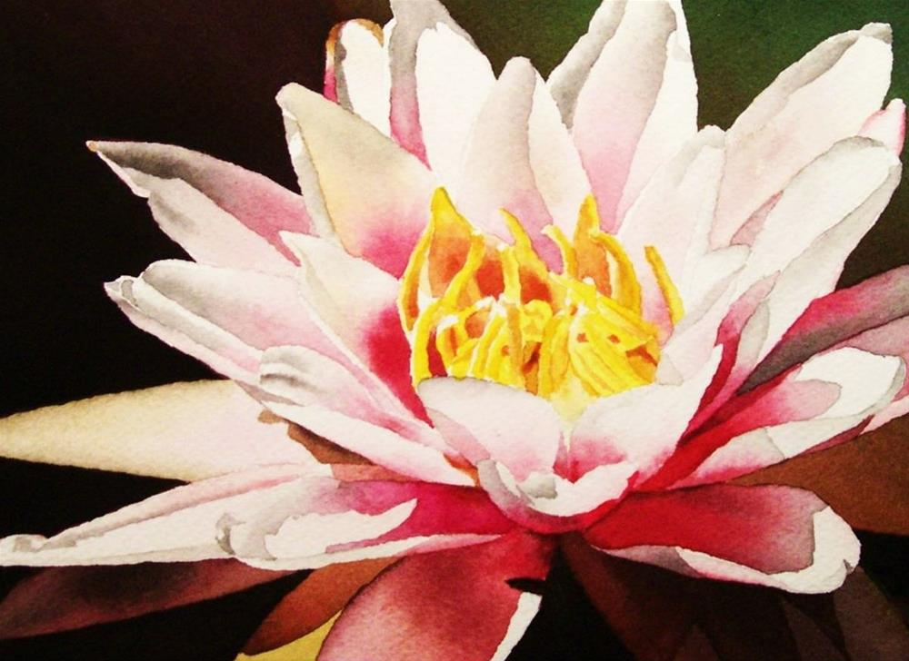 """""""Waterlily with Yellow Center"""" original fine art by Jacqueline Gnott, TWSA, WHS"""