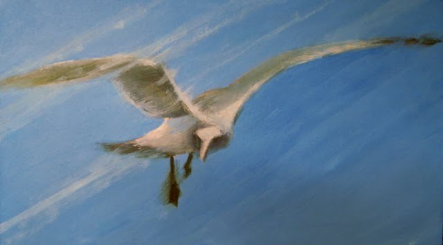 """Easy Pickins  seagull in flight oil painting"" original fine art by Robin Weiss"