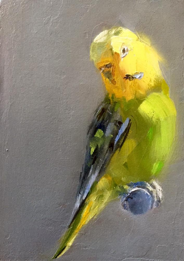 """Yellow and Green Budgie"" original fine art by Gary Bruton"