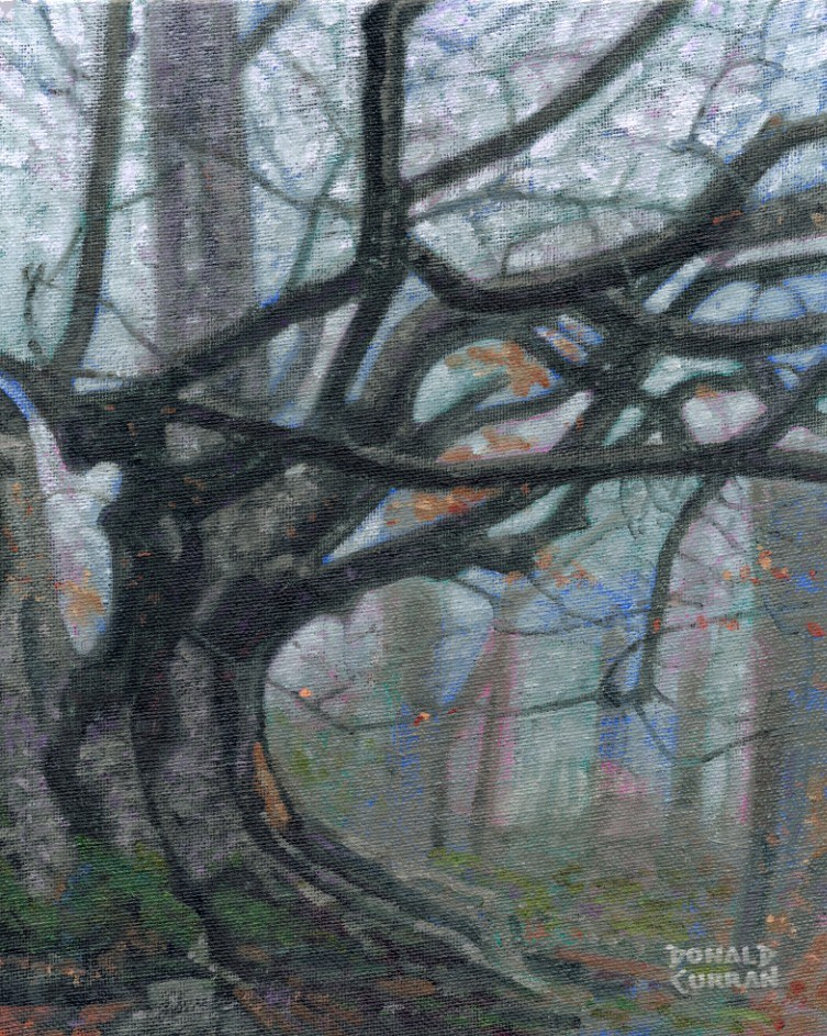 """Misty Forest"" original fine art by Donald Curran"