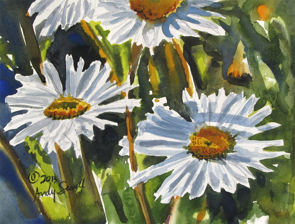 """Daisy Trio"" original fine art by Andy Sewell"