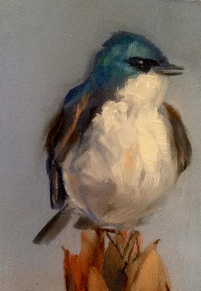 """""""Tree Swallow, Perched"""" original fine art by Gary Bruton"""
