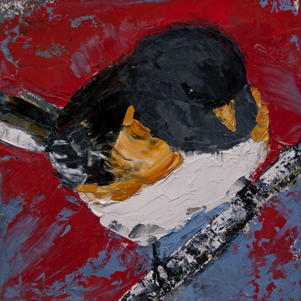 """Junco"" original fine art by Jani Freimann"