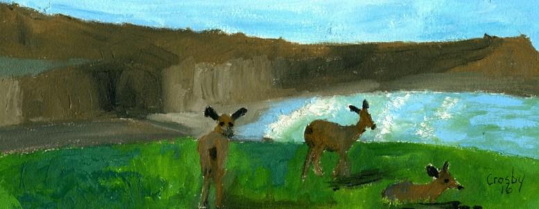 """Point Reyes Deer"" original fine art by Donna Crosby"