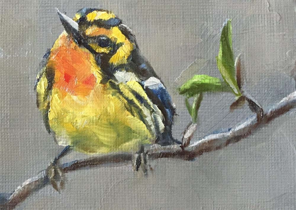 """Warbler"" original fine art by Gary Bruton"