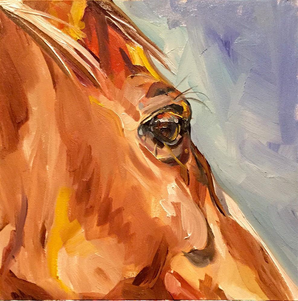 """Closeup Pony"" original fine art by Lauren Kuhn"