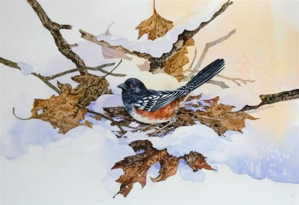 """Rufous-sided Towhee"" original fine art by Jean Pierre DeBernay"
