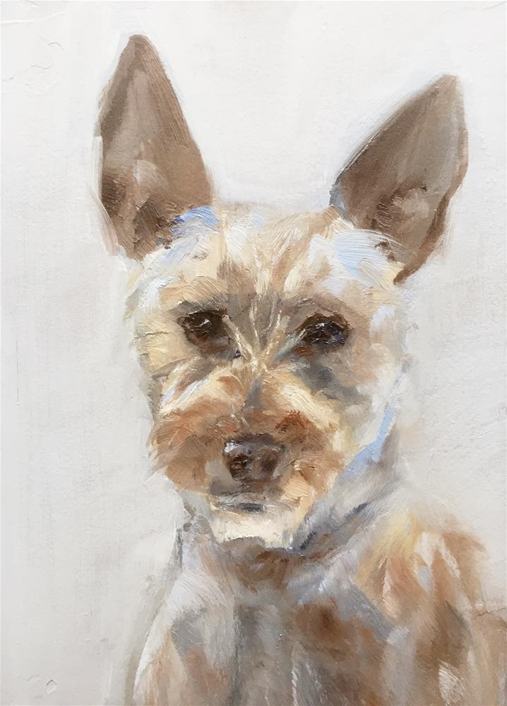 """Mutt"" original fine art by Gary Bruton"