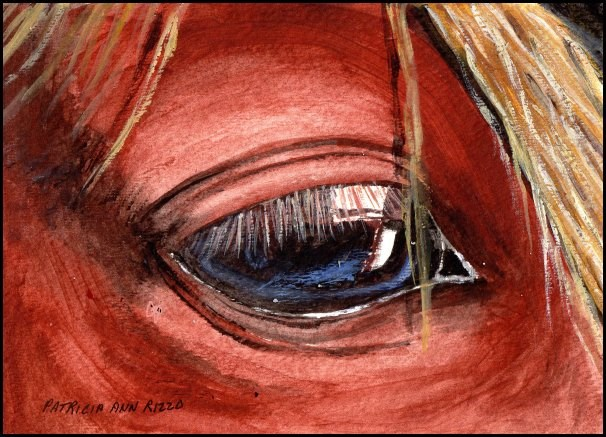 """The Gentle Eye of the Horse"" original fine art by Patricia Ann Rizzo"