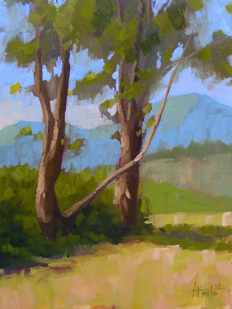 """""""Brasstown Valley Trees III"""" original fine art by Adam Houston"""