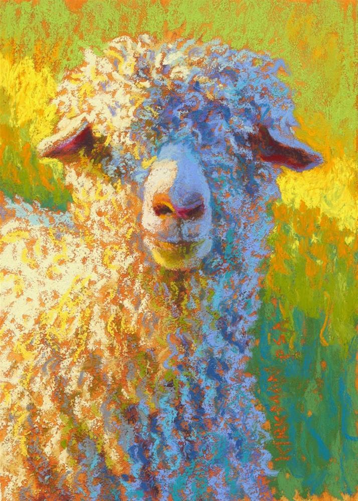 """Angora"" original fine art by Rita Kirkman"