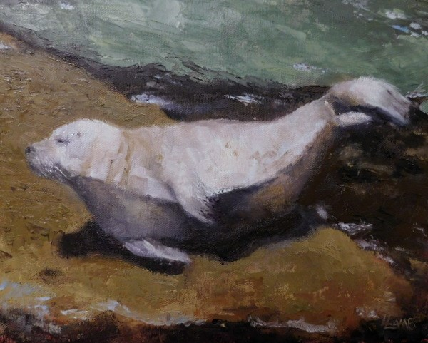 """Sunbathing Seal"" original fine art by Lori Lamb"