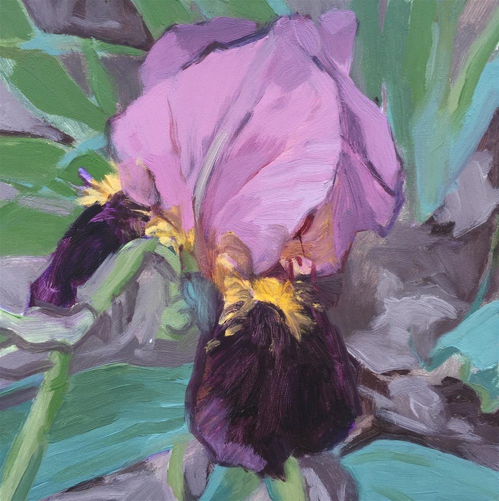 """Two-toned Purple Iris"" original fine art by Julie Larick"