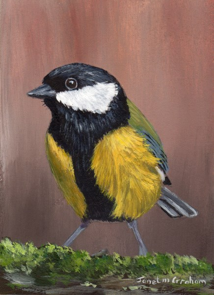 """Great Tit ACEO"" original fine art by Janet Graham"