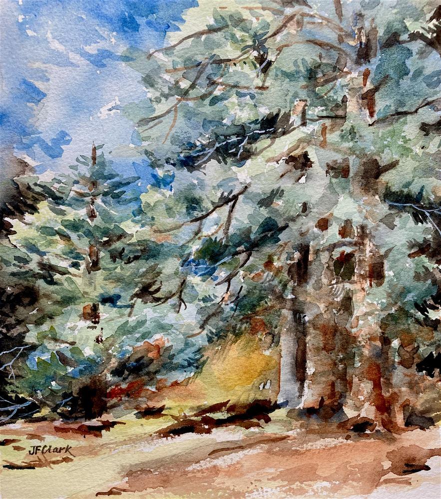 """Shaded Woodland study"" original fine art by Judith Freeman Clark"
