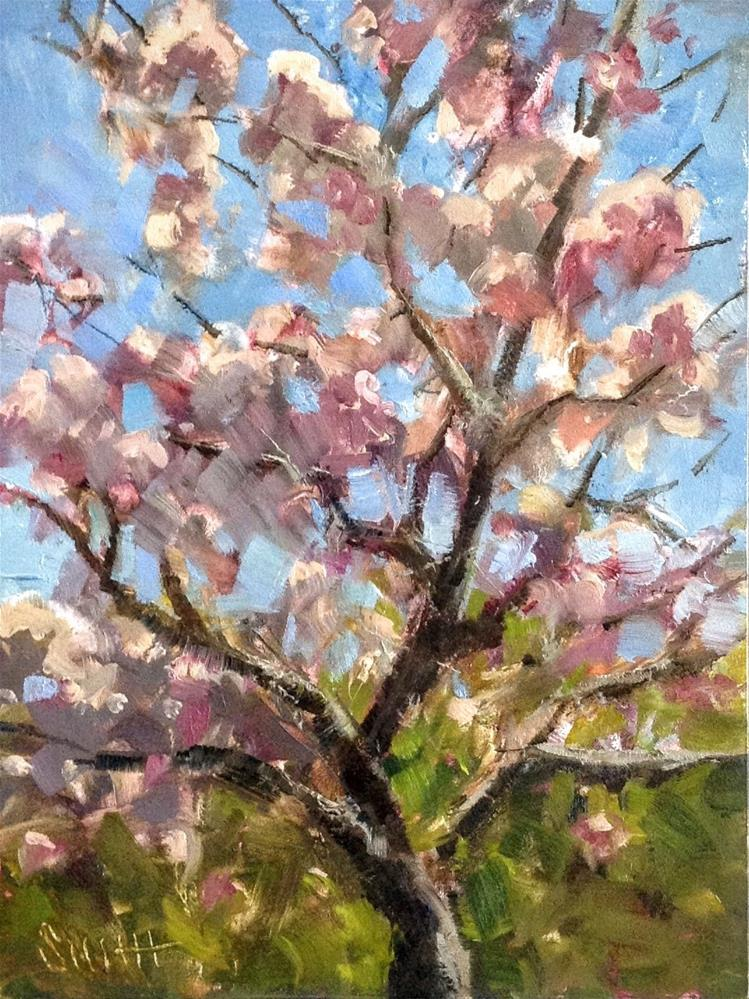 """Cherry Blossoms"" original fine art by Barbie Smith"