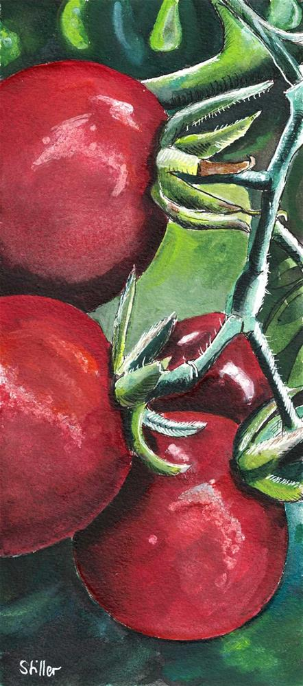 """3119 Cherry Tomatos"" original fine art by Dietmar Stiller"