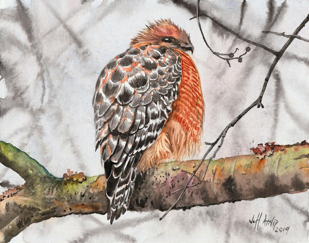 """Winter Hawk"" original fine art by Jeff Atnip"
