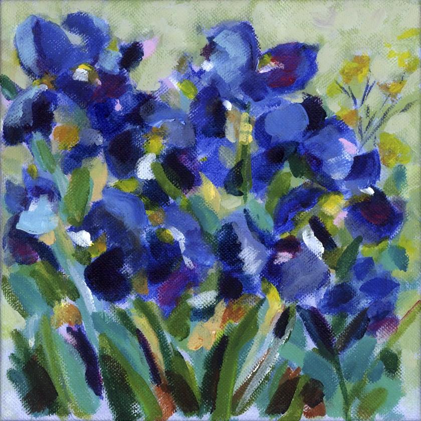 """""""Blue Iris Waltz"""" original fine art by Pamela Gatens"""