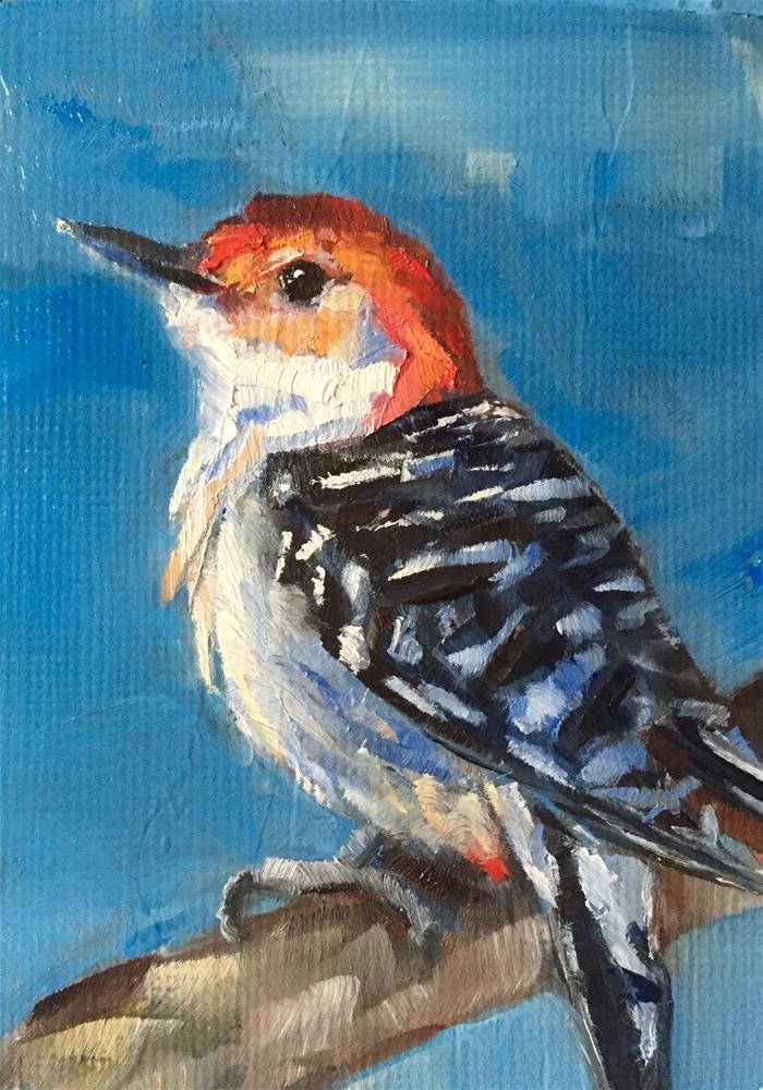 """Red-bellied Woodpecker"" original fine art by Gary Bruton"
