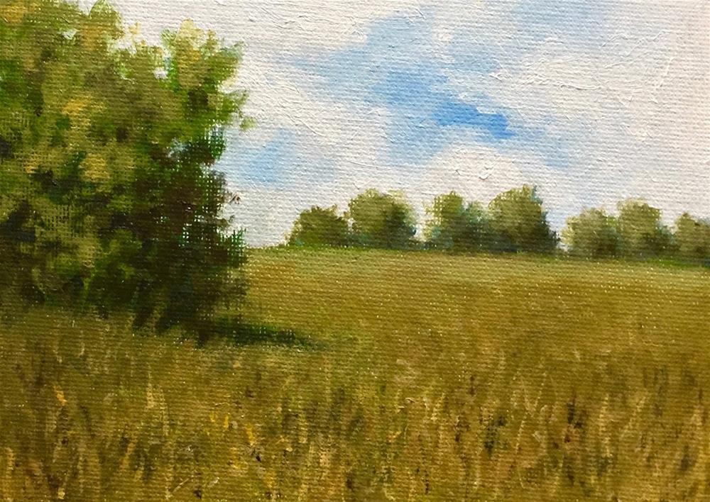 """""""Summer Landscape (Lincoln, MA)"""" original fine art by Michelle Garro"""