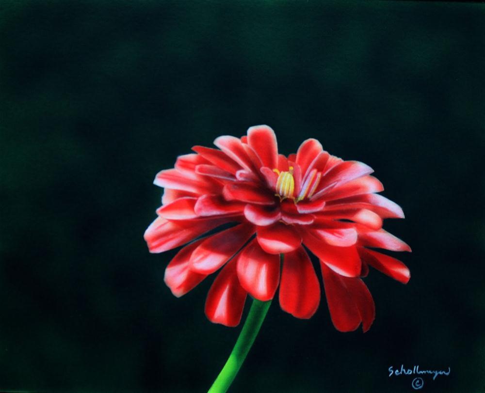 """June Bloom"" original fine art by Fred Schollmeyer"