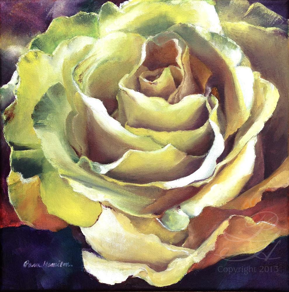 """Glorious Bloom"" original fine art by Pamela Hamilton"