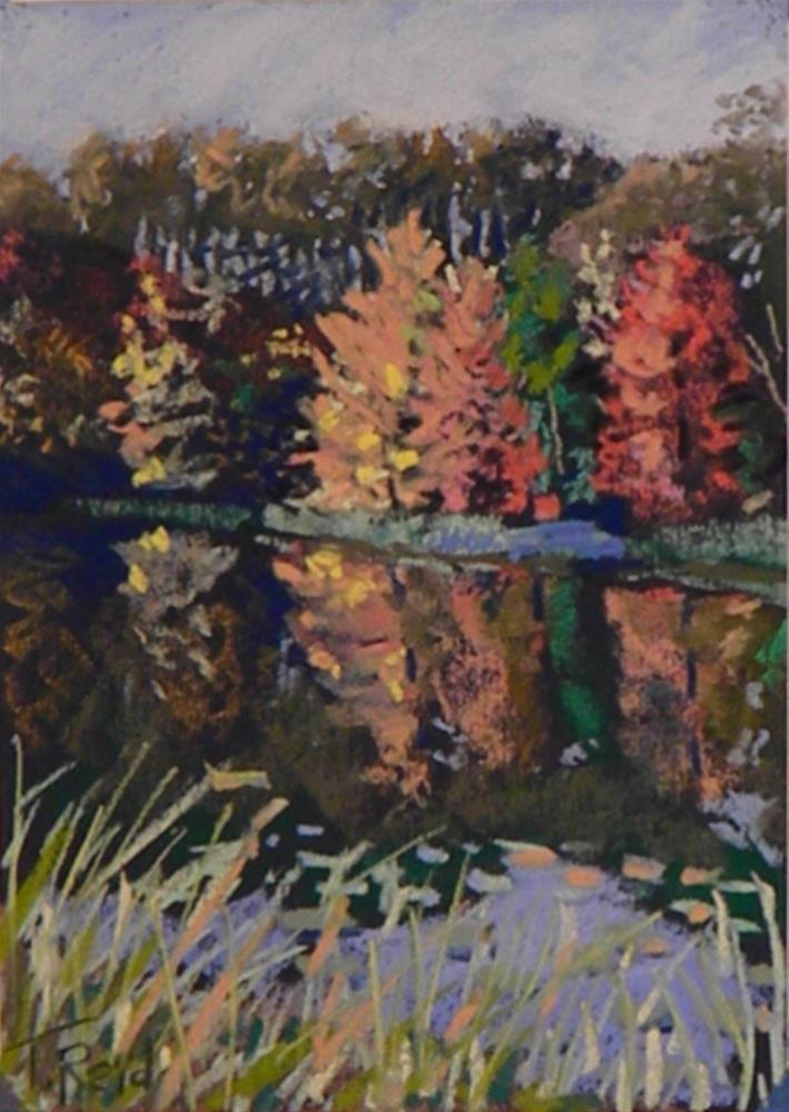 """""""Fall delight"""" original fine art by Toby Reid"""